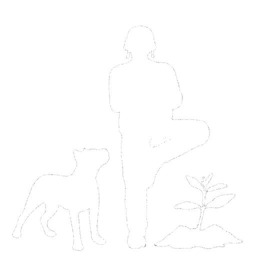 wsp-logo-white-w512