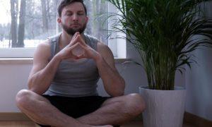 Breath Meditation @ Online Sessions